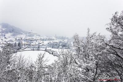 Pogled iz Hribca