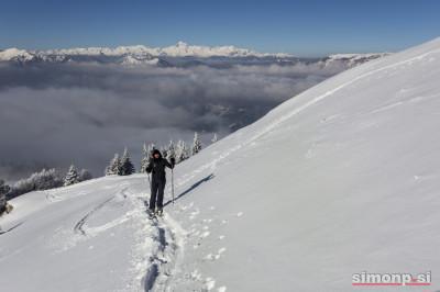 Polona proti vrhu